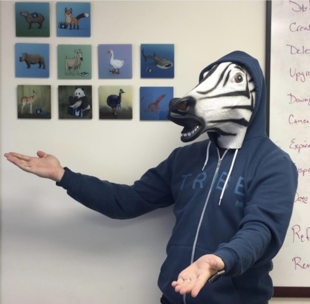 Modern Tribe - Zebra Matt