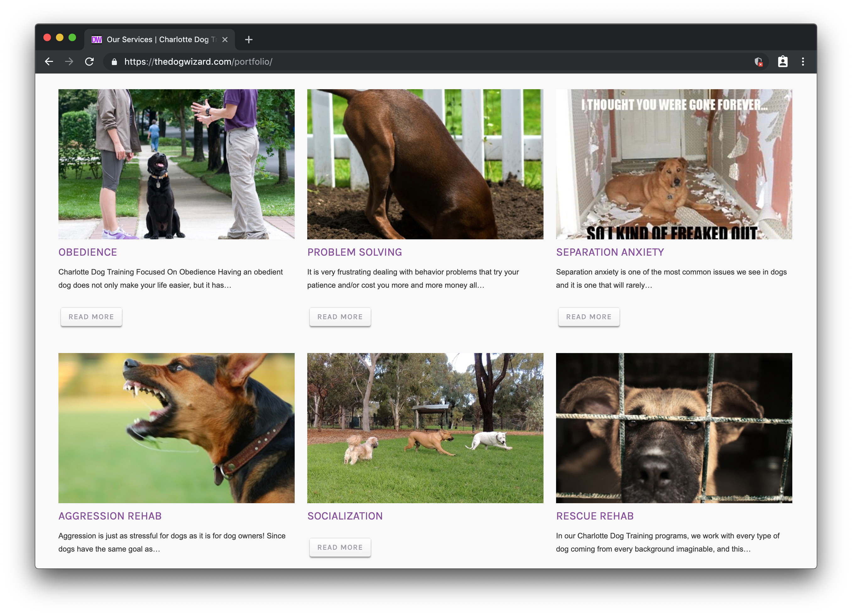 A screenshot of The Dog Wizard services webpage showing a 3 by 2 grid of images and headlines promoting dog services, like obedience, problem solving, and socialization.